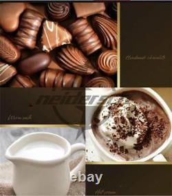 2 Tanks Commercial Chocolate Melting Pot Electric Hot Chocolate Melter 220V New