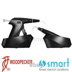 Woodpecker Original DTE Obturation Heating Packing + hot melting filling FI P+G